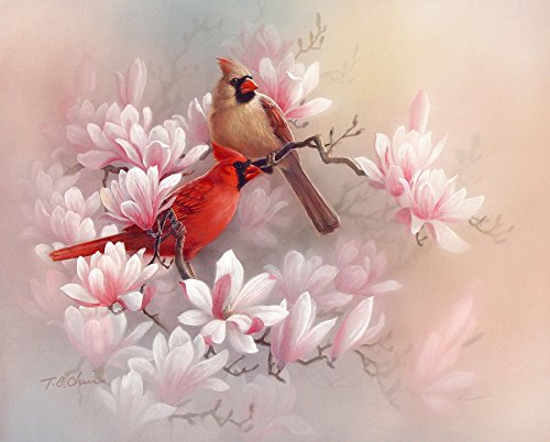 Amazon cardinals and magnolia art print of painting flowers cardinals and magnolia art print of painting flowers birds chinese asian oriental style mightylinksfo