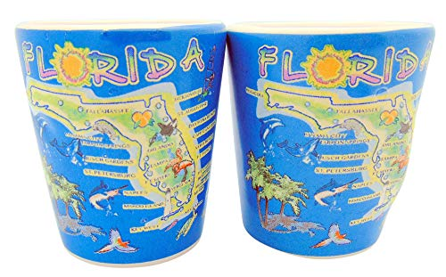 Florida Map Shot Glass Decorative Embossed Glasses Set Pack of 2