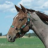 #5: Weaver Leather Adjustable Patterned Nylon Horse Halter