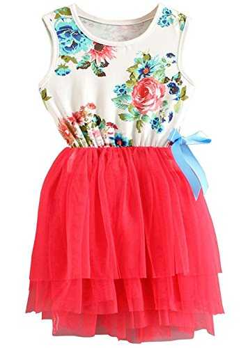 Large Bow Floral Ships (Yober Kid Girls Cute Floral Sundress Tulle Tutu Skirt Tank Bow Skirt Dress (Rose red, 2T))