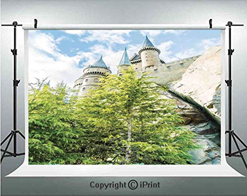 Wizard Photography Backdrops Witchcraft School and Wizard Castle in Woods Replica in Japan Picture Print,Birthday Party Background Customized Microfiber Photo Studio Props,7x5ft,Green Blue ()