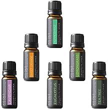 Aromatherapy Top 6 100% Pure Therapeutic Grade Basic Sampler Essential Oil Gift Basic sampler essential oil gift set 6/10ml (lavender, sweet orange, peppermint, lemongrass, tea tree, eucalyptus)