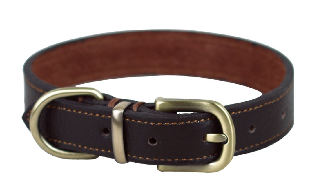 Brown PENTAQ Adjustable Leather Dog Collar Set Strong Small Medium Dogs Adjustable Neck Size 33 cm-39 cm 2cm Wide, Puppies Cats Great Walking Training Head Collar (Brown)