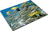 MSD Place Mat Non-Slip Natural Rubber Desk Pads Design: 12694094 School of Colorful Tropical Fish in The Caribbean sea