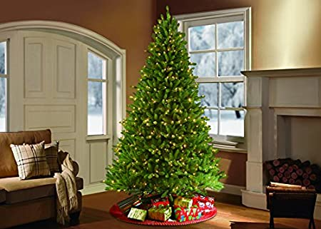 Fraser Fir Tree - Grand Fir Christmas Tree