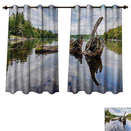 RuppertTextile Driftwood Blackout Thermal Curtain Panel Remains of a White Cedar Tree Trunk in The Lake and The Sky Digital Image Patterned Drape for Glass Door Green Pale Grey W72 -