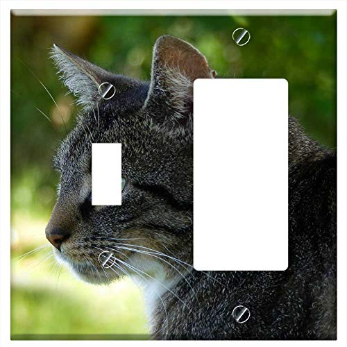 1-Toggle 1-Rocker/GFCI Combination Wall Plate Cover - Animal Cat Felis Silvestris Catus Grey White