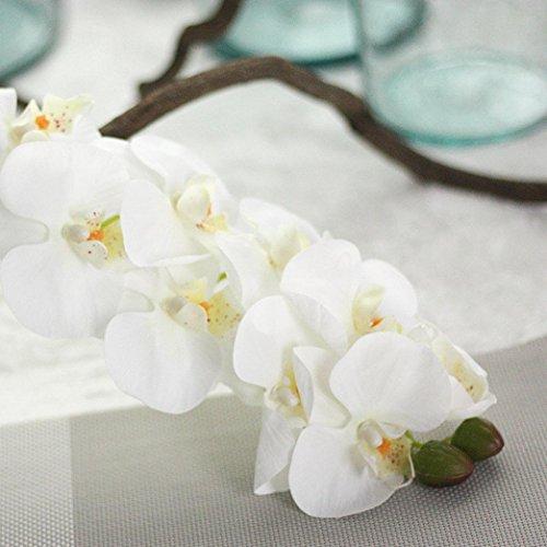 matoentm-simulation-butterfly-orchid-phalaenopsis-branch-home-garden-diy-decor-houseplant-white