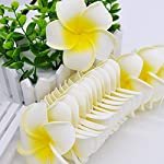 Show-Fashion5cm-10pcs-Plumeria-Hawaiian-Foam-Frangipani-Artificial-Fake-Flowers-Headress-Flower-Baby-Shower-Wedding-PartyH155cm