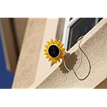 Hide-Your-Cam Nest Cam Outdoor Security Camera Camouflage Sun Flower Cover Skin Case Disguise Protection Decoration