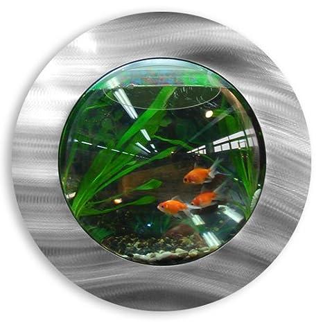 Peces burbujas peces burbujas con Deluxe de Aluminio Cepillado montado en la pared tanque de peces: Amazon.es: Hogar