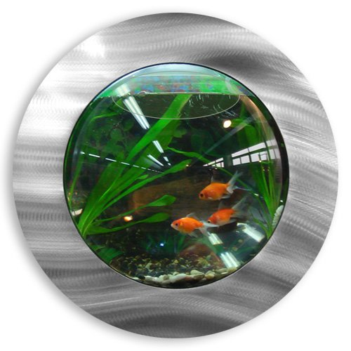 Fish Bubbles Brushed Aluminum Fish Bubble with Deluxe Wall Mounted Fish Tank