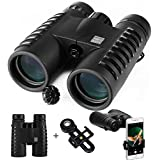 HD Binoculars for Adults, Compact for Bird Watching Stargazing Hunting travelling Sporting Events, 10X 42 High Powered folding Binocular, Bak4 Roof Prism & FMC Optics for Bright and Clear birding B25