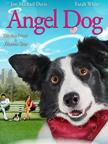 Angel Dog]()