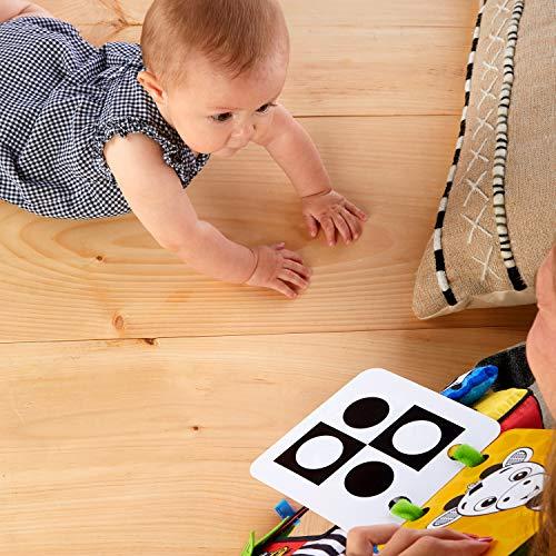 51tOHGaTDWL - Baby Einstein Flip for Art High Contrast Floor Activity Mirror with Take Along Cards, Newborn+
