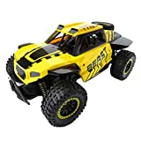 Inkach Remote Control Car | High Speed 30km/h Off-Road RC Truck Vehicle | Electric Racing Cars with Rechargeable Batteries (Yellow)