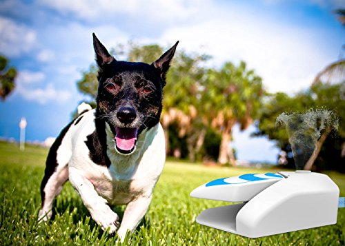 (ALL FOR PAWS Dog Step on Water Sprinkler Pet Garden Water Fountain with Pressure Regulator)