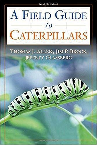 Caterpillars (Northridge Photography Presents Book 9)