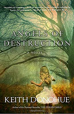 Angels of Destruction: A Novel