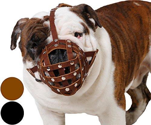 dog muzzle for bulldogs - 1
