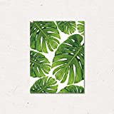 """ChezMax Wall Art Oil Painting on Canvas Print Artwork Pictures for Home Decor Green Tropical Plants Monstera 19.7"""" X 23.6"""""""