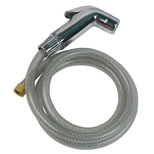 Brasscraft Mfg Chrome Sink Spray Head with 4-Feet Hose
