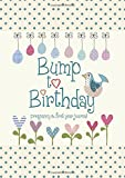 Bump to Birthday, Pregnancy & First Year Baby Journal : an award-winning journal / diary to help you hold onto memories…