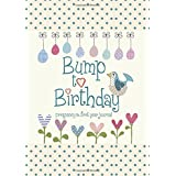 Bump to Birthday, Pregnancy & First Year Baby Journal : an award-winning journal / diary to help you hold onto memories of th
