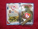 Bronty & Steg Only Beanie Baby Dinosaurs from McDonald's