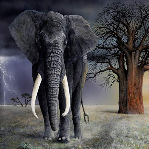 Home Comforts Laminated Poster Elephant Art Tusk Trunk Ears Mammoth African Vivid Imagery Poster Print 11 x 17