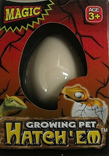 Hatching Dinosaur Egg 3 Pack ()