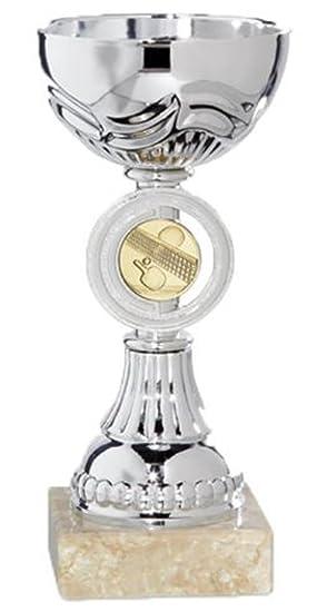 Trofeos y Copas Deportivas PACK de 4 GRABADOS 15cm Trofeos PERSONALIZADOS Premios Deportivos Trofeos deportivos (15cm): Amazon.es: Deportes y aire libre