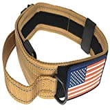 DOG COLLAR WITH CONTROL HANDLE MILITARY STYLE METAL QUICK RELEASE TACTICAL BUCKLE HEAVY DUTY 2'' WIDTH NYLON WITH USA FLAG GREAT FOR HANDLING AND TRAINING LARGE CANINE MALE OR FEMALE K9 (Desert Tan)