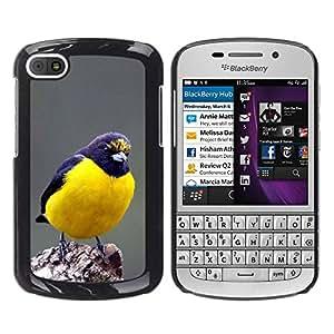 YOYOYO Smartphone Protección Defender Duro Negro Funda Imagen Diseño Carcasa Tapa Case Skin Cover Para BlackBerry Q10 - azul songbird Naturaleza plumas