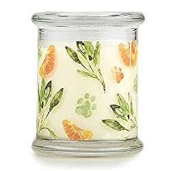 Pet House Candle in 15 Fragrances - All Natural So