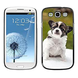 GoGoMobile Slim Protector Hard Shell Cover Case // M00118589 Chihuahua Puppy Animals Dogs Pet // Samsung Galaxy S3 S III SIII i9300