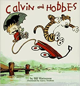 Image result for calvin and hobbes book