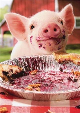 Amazon.com: Fiesta Pig placa de pie – Avanti Tarjeta de ...