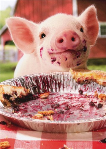 Birthday Pig - Party Pig Pie Plate - Avanti Birthday Card
