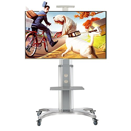 North Bayou Mobile TV Cart TV STAND with Mount for 40