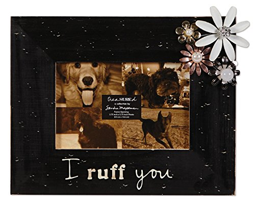 C.R. Gibson Treasured Frame by Sandra Magsamen, 4 by 6-Inch, Ruff