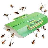 Greenty 24 Trampas Trampas contra Escarabajos y Cucarachas