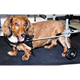 Dog Wheelchair for Extra Small Dog (Size 2) By Huggiecart. Approximate Weight 9 to 18 Lbs