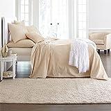 BrylaneHome Chenille Bedspread (Oatmeal,Queen)