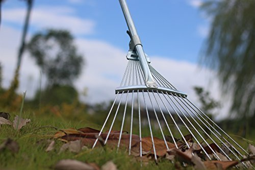 Wire Rake - C2F Garden Lawn Leaf Rake 58.3 Inch Adjustable Metal Rake Tool for Yard (Metal Buckle)