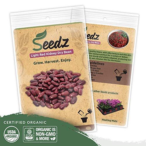 Organic Bean Seeds (APPR. 115) Light Red Kidney Dry Bean - Heirloom Vegetable Seeds - Certified Organic, Non-GMO, Non Hybrid - ()