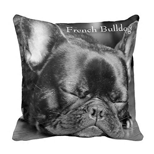 Jtartstore Sleeping French Bulldog 18 x 18 Inches Retro Vintage Home Decorating Indoor and Outdoor Sofa, Bed Pillow Cover