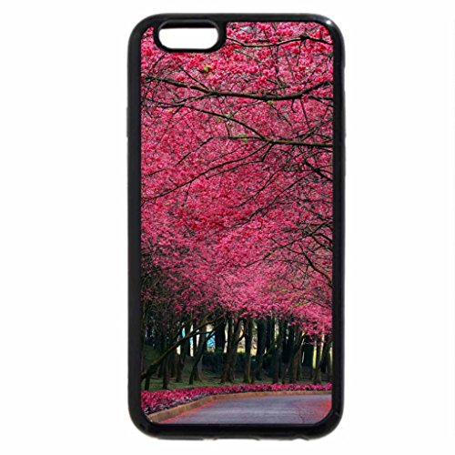 iPhone 6S / iPhone 6 Case (Black) Pink Pathway!