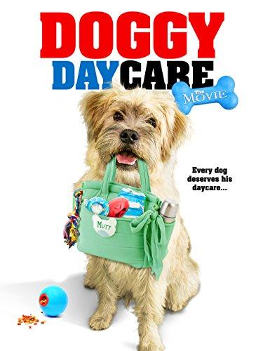 - Doggy Daycare