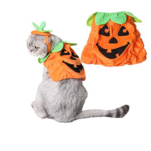 Deluxe Plush Orange Tiger Adult Costumes (Mummumi Cats Dogs Pumpkin Warm Soft Adjustable Costumes Set Dog Hat for Pet Halloween Party Cosplay Accessories Outfits Apparel Headwear)